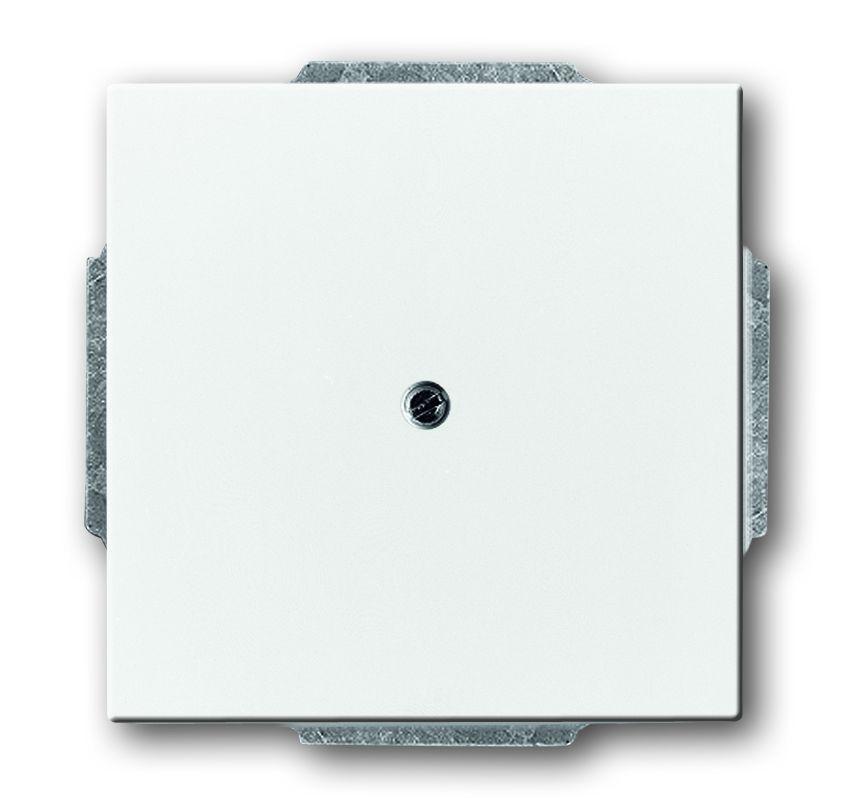 busch jaeger 1742 84 blindzentralscheibe mit tragring davos studiowei online kaufen im voltus. Black Bedroom Furniture Sets. Home Design Ideas